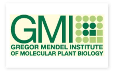 gmi_logo.jpg