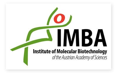 imba_logo.jpg