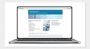 Tatschl - Wirtschaftstreuhand und Steuerberatungs GmbH // Website